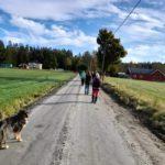 Promenad i Mossbacka